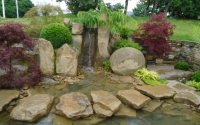 Southport Flower Show 2012